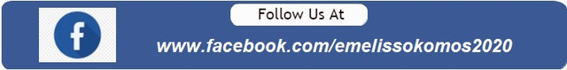 Facebook-Filler-for-728x90-Banner-ad