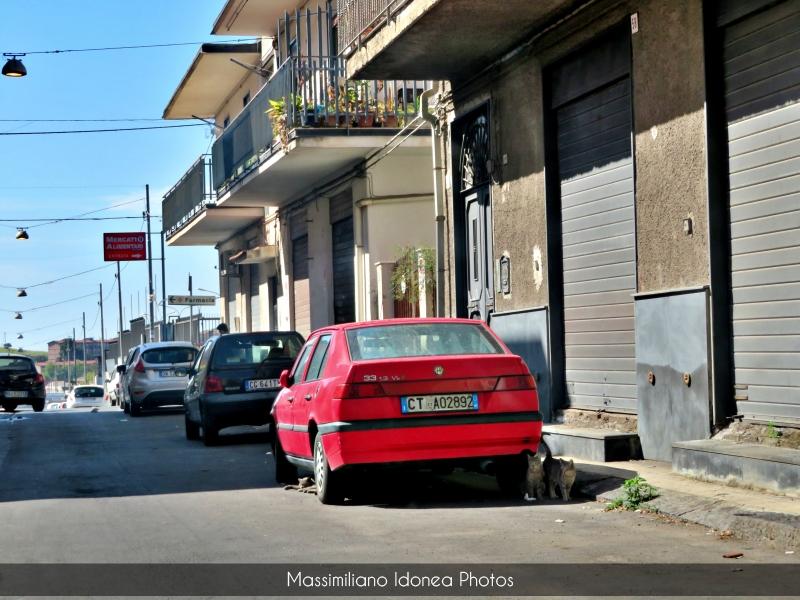 avvistamenti auto storiche - Pagina 7 Alfa-Romeo-33-1-3-90cv-92-CTA02892-85-665-14-7-2016
