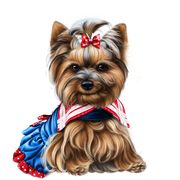 yorkie-4th-of-july-8