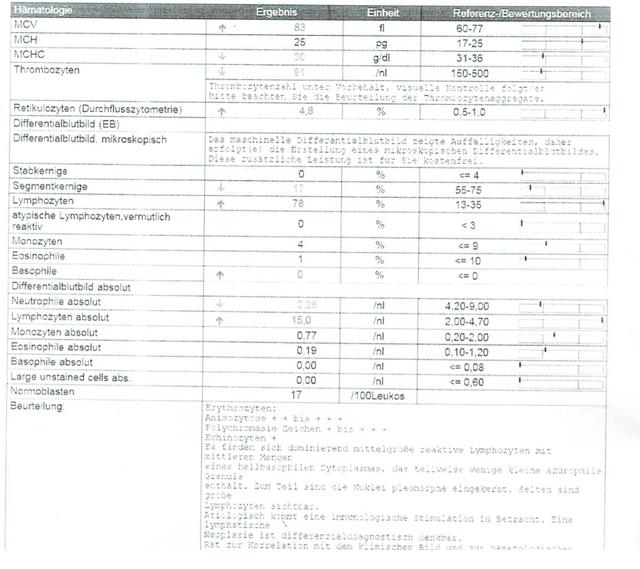 Laborbericht-II