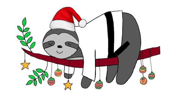 Judo-in-der-Weihnachtszeit-1