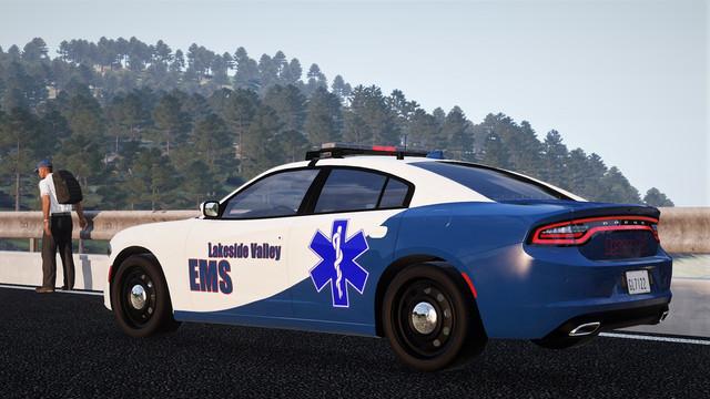 LN1-Bat-Chief2.jpg