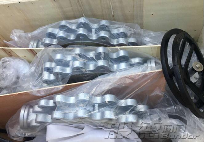 The butterfly valve products of Bundor exported to West Asia