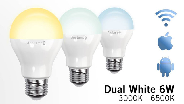 dual-white-wifi-led-bulb-6w-led