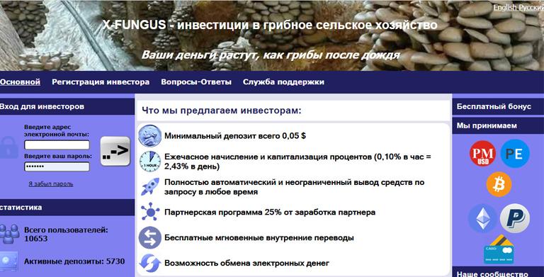 X-FUNGUS