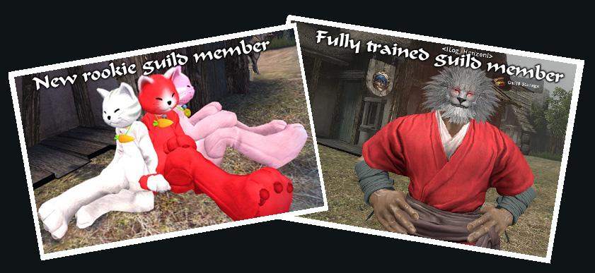 kitty-member.jpg