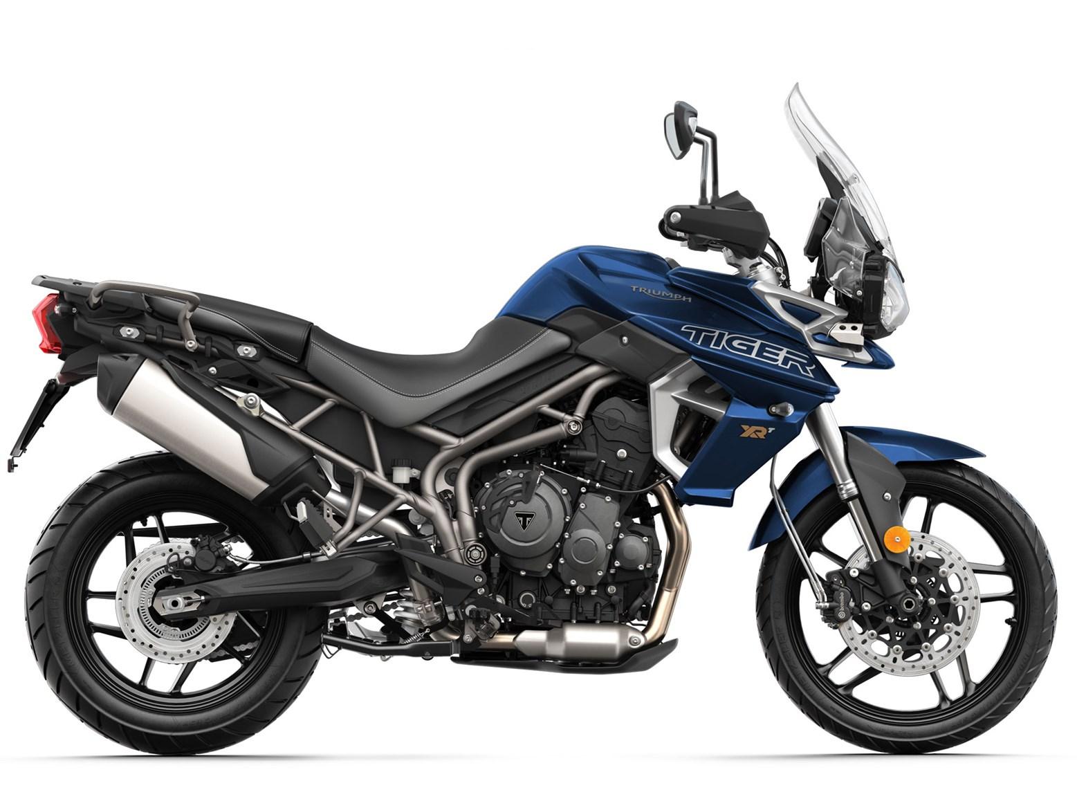 Tiger-800-blue