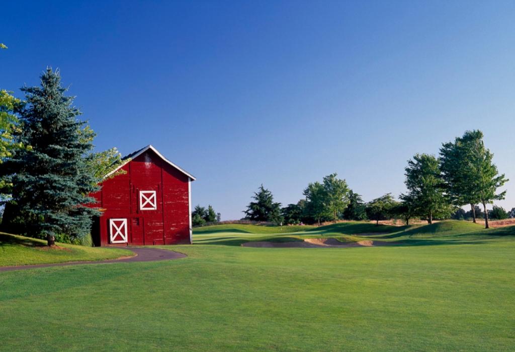 Snap Sports Golf Club