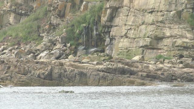 moray-3-dornoch-and-dolphins-Still032