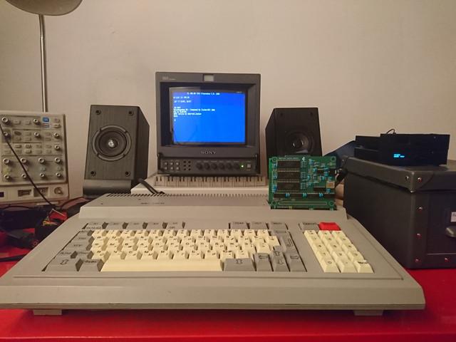 DSC-0029.jpg