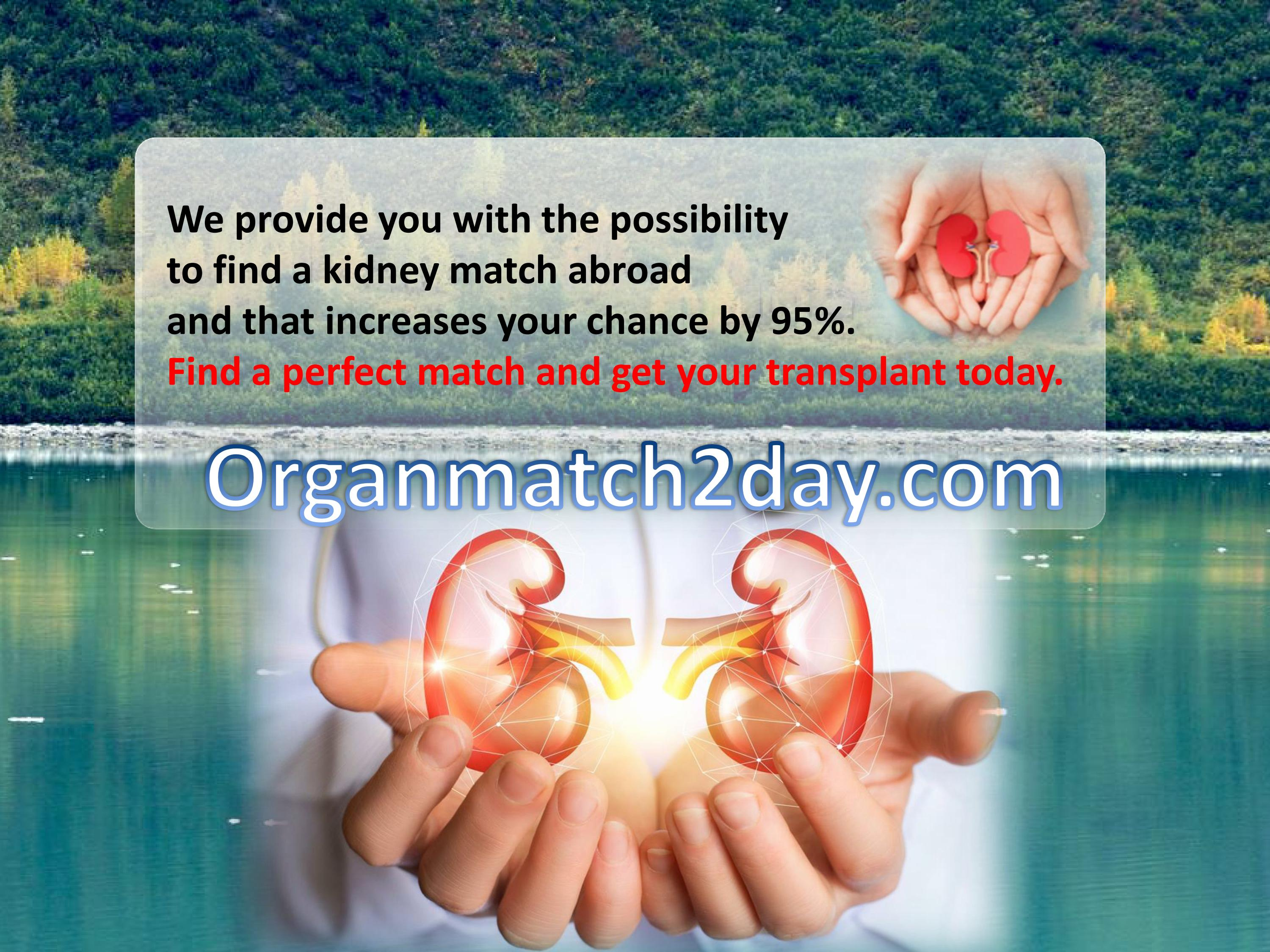 Find a kidney donor