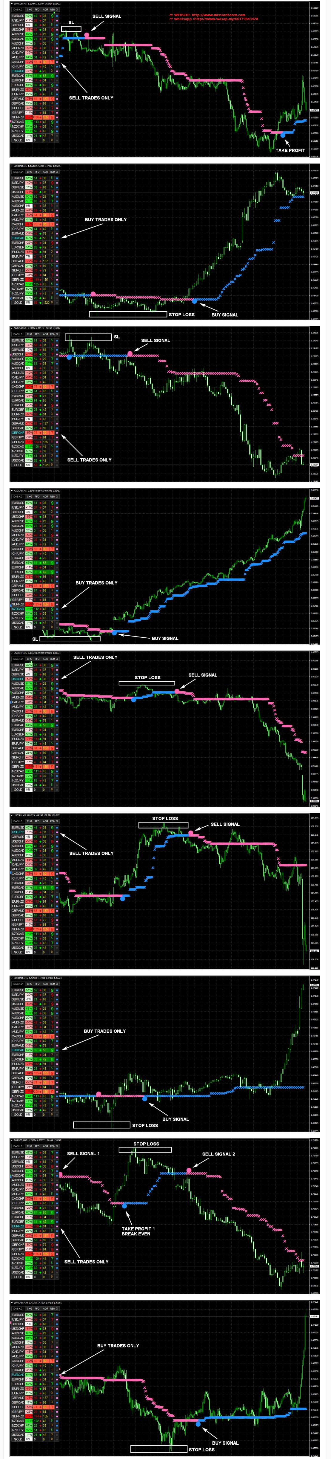 Nano Trader FX - universal trading system
