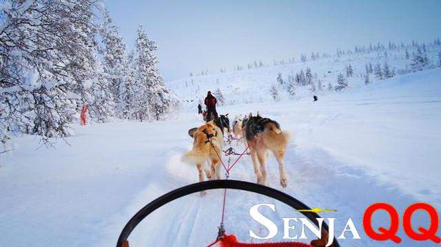 Finlandia Sendu Tanpa Turis di Kampung Halaman Sinterklas