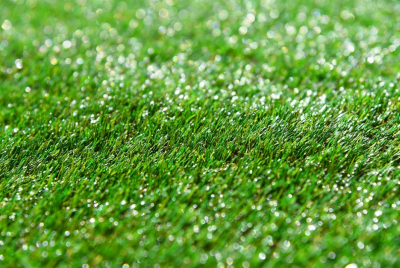 Synthetic-Grass-Installers-in-Sydney