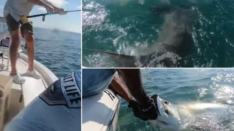(VIDEO) Ribar umalo postao plijen: Pogledajte nevjerovatnu borbu za ulov s morskim psom