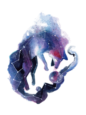 https://i.ibb.co/H20cVyT/fox-constellation-7.png