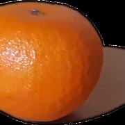 Hostal-Santa-Clara-Estartit-mandarina