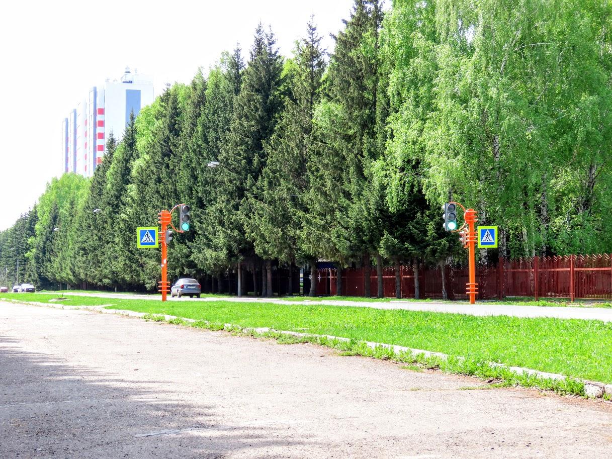 IMG-0282