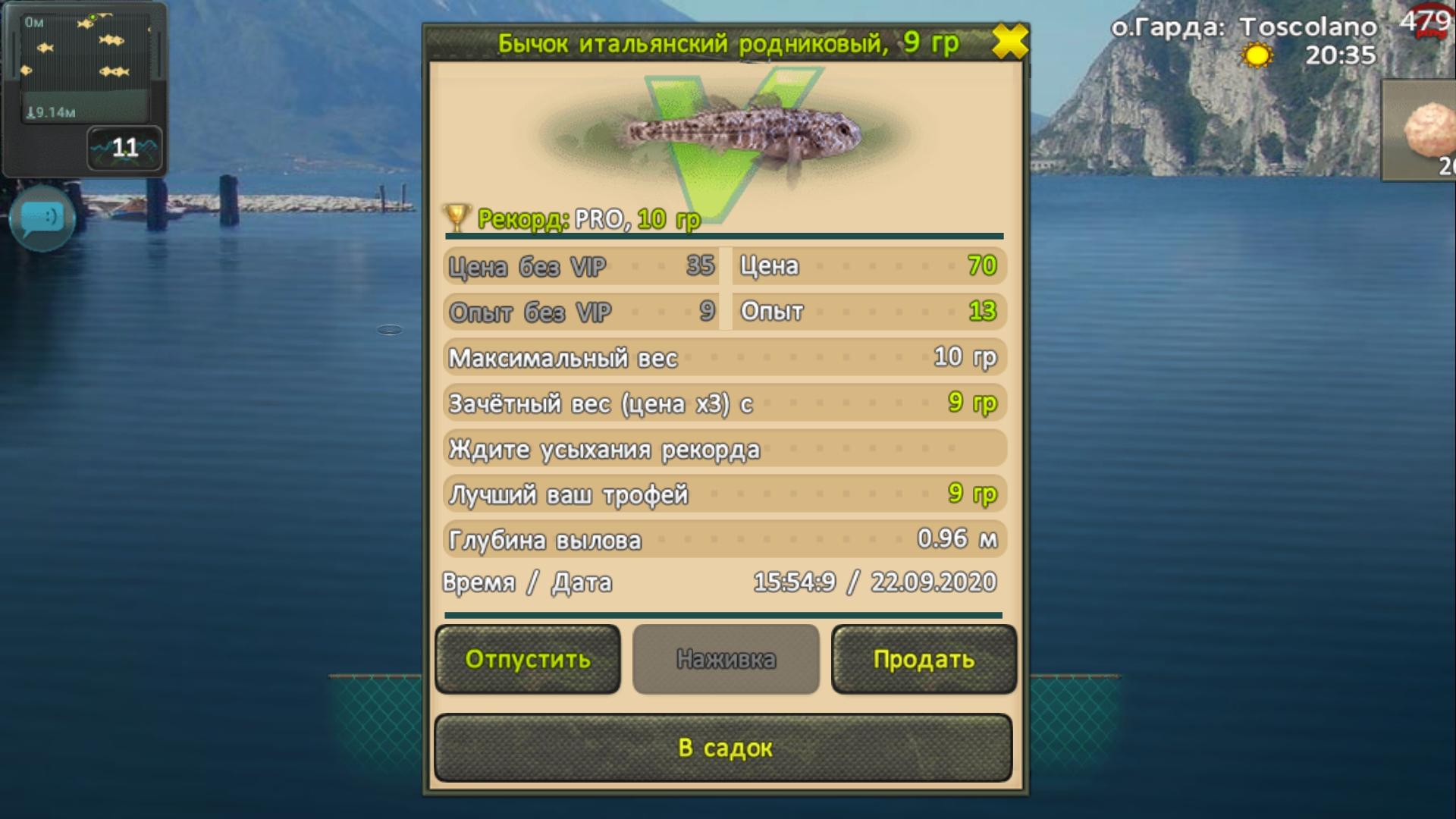 Screenshot-20200922-155412-World-of-Fish