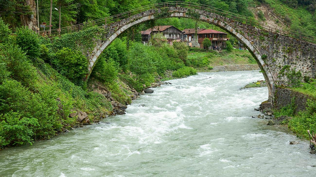نهر فرتينا داريسي