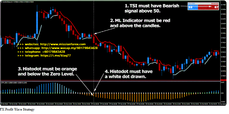 Risk Doctor Trading Course Charles Cottle – RD1 & RD2(SEE 1 MORE Unbelievable BONUS INSIDE!)FX Profit Wave Strategy