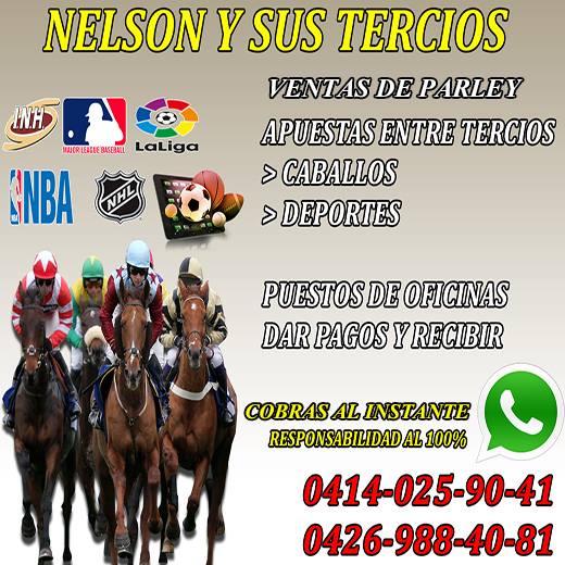 HIPISMO »» INFORMACION EXCLUSIVAMENTE PARA LOS DIASSABADO Y DOMINGO PARA EL HIPODROMO LA RINCONADA  Dw-Va-Xer-Ws-AASNp3