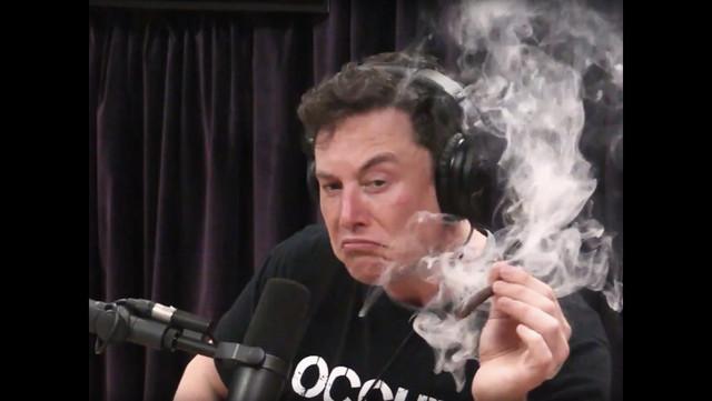 Elon.jpg