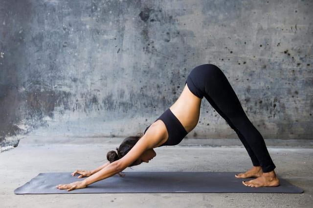https://i.ibb.co/HKHZkdz/Hatha-Yoga1.jpg