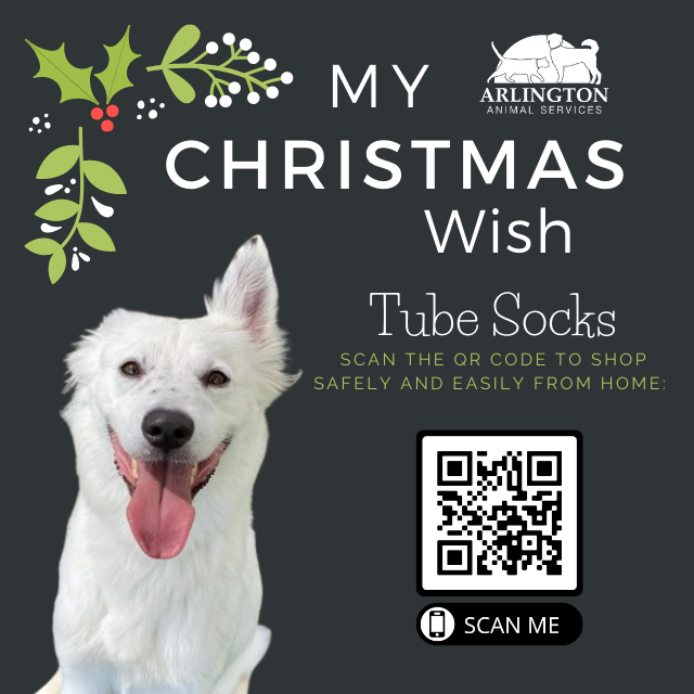 Animal-Services-2020-Angel-Tree-067.png