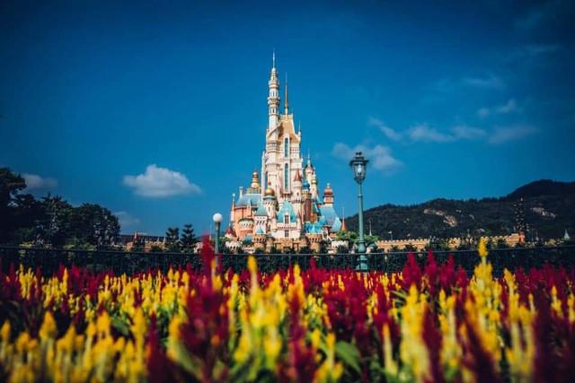 [Hong Kong Disneyland] Castle of Magical Dreams (2020) - Page 12 Zzzzzzzzzzzzzzzzzzzzzzzzzzzzzzz3