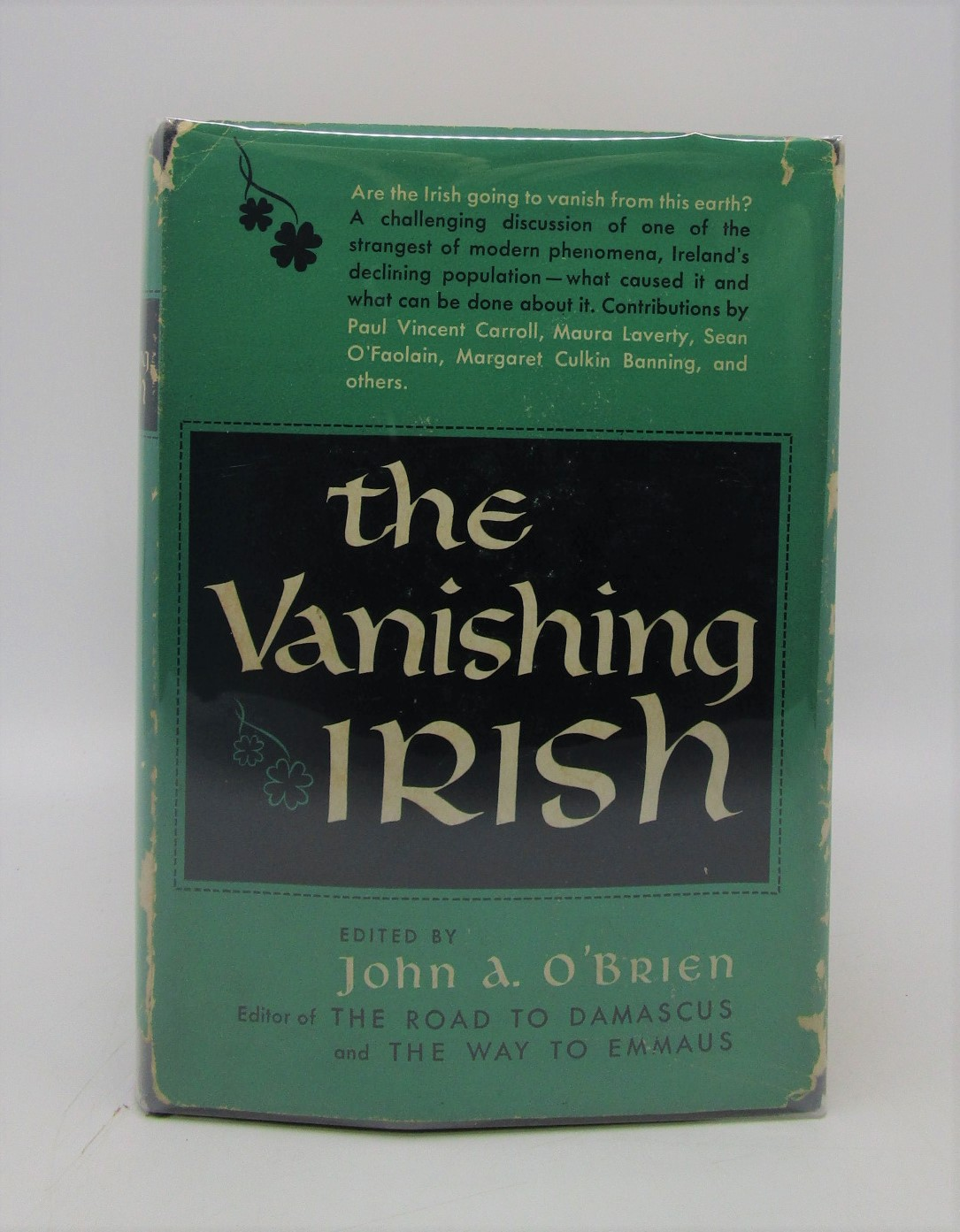 Image for The Vanishing Irish: The Enigma of the Modern World (First Edition)
