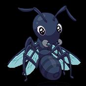 sidekick-season-ant-2.png