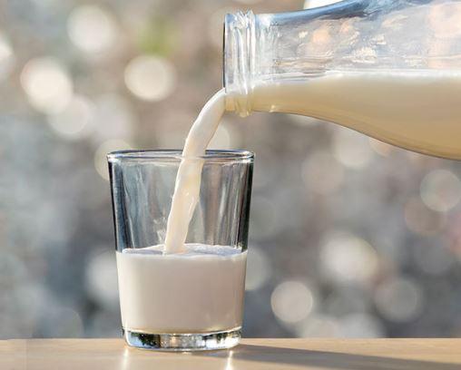Kandungan Susu Kambing Etawa