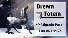 Dream_Totem.jpg