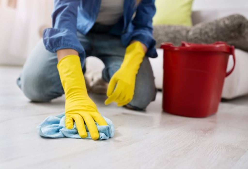 The Annals of House Cleaning Services Refuted
