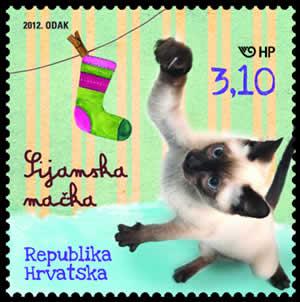 2012. year DJE-JI-SVIJET-KU-NI-LJUBIMCI-SIJAMSKA-MA-KA