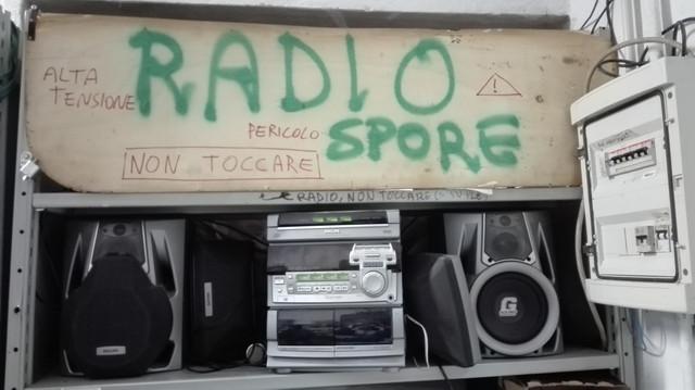 radio-spore