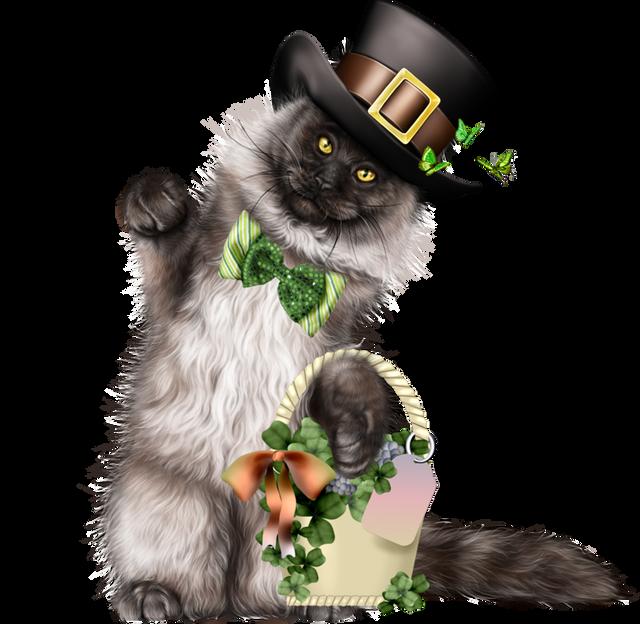 Leprechaun-Cat-With-Beer-58.png