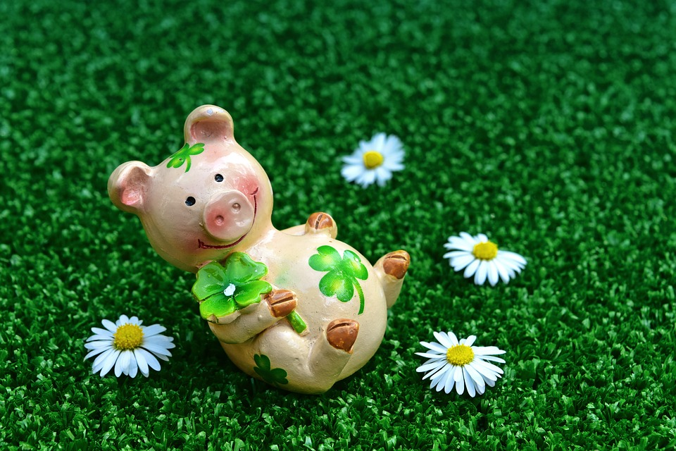 lucky-pig-3838149-960-720