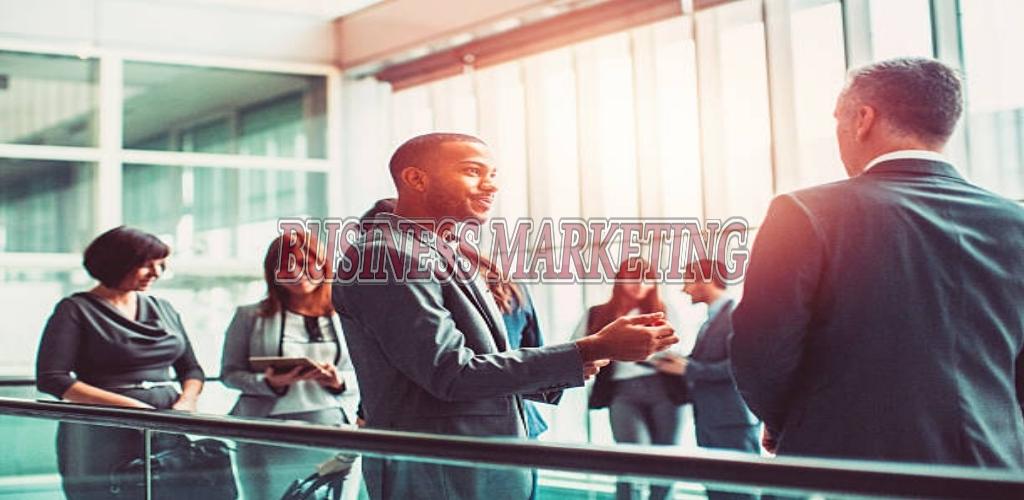 Business Marketing Degree