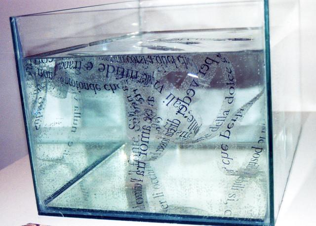 02-Alfonso-Lentini-Specchiati-sembianti-stampa-su-pellicola-trasparente-acqua-vasca-di-vetro-specchi