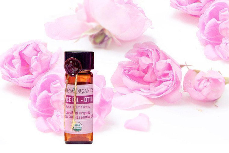 Absolute-oils-Rose-oil-Alteya-Organics