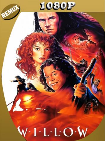 Willow en la Tierra del Encanto (1988) BDRemux [1080p] Latino [GoogleDrive]