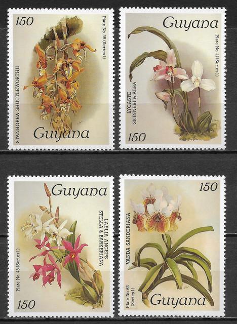O Guyana 1426