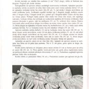 62-lpp
