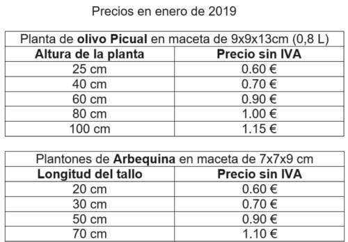precios planta de olivo vivero 2019, comprar olivos, tarifas 2019, tabla de precios de venta plantones de olivo