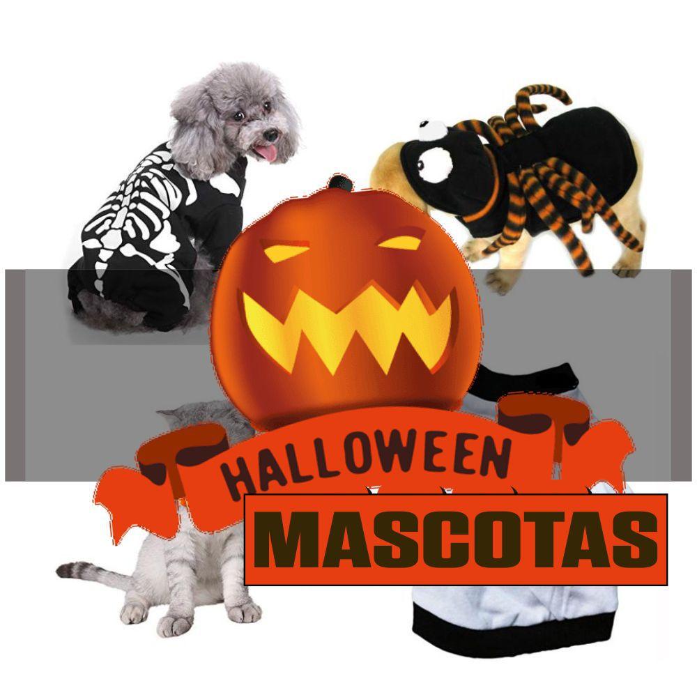 Novedades en disfraces de mascotas más vendidos para Halloween-2021