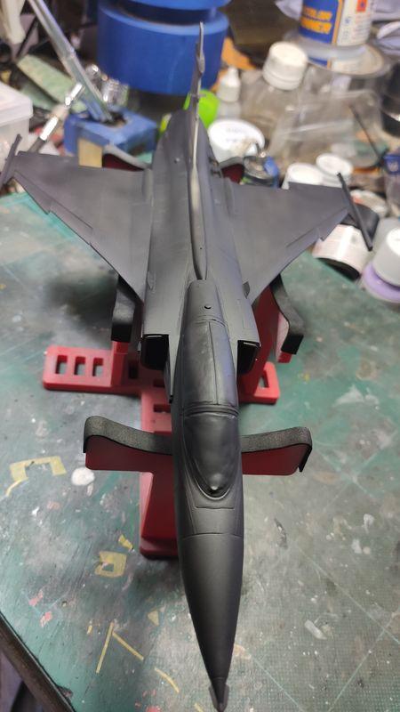 """MT: Jas-39C Gripen """"Wild Tiger"""" NTM 2017 Kitty Hawk 1/48 IMG-20200102-163938"""