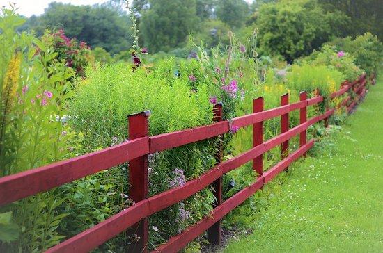 Fence-883328-1280