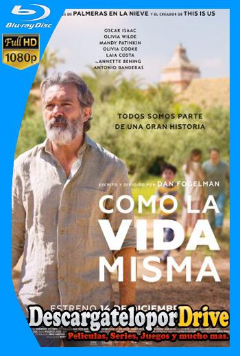 La Vida Misma (2018) [1080p] [Latino] [1 Link] [GDrive] [MEGA]